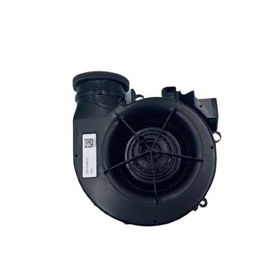 Immagine di Motore senza cassa per Maico ER EC RF17 (Maico).